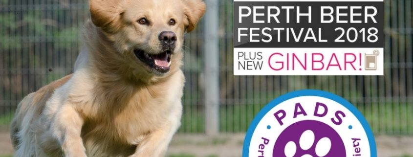 Dog agility by PADS at Perth Beer Festival